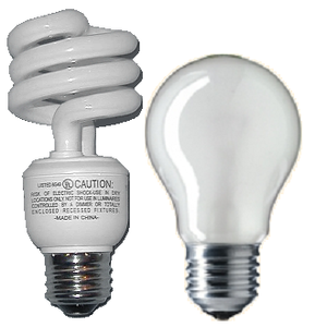 300px-Incandescent_and_fluorescent_light_bulbs1