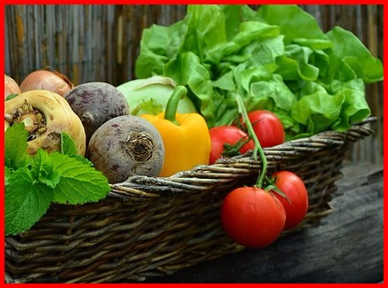 basket of tomatoes, lettuce, and other garden vegetables